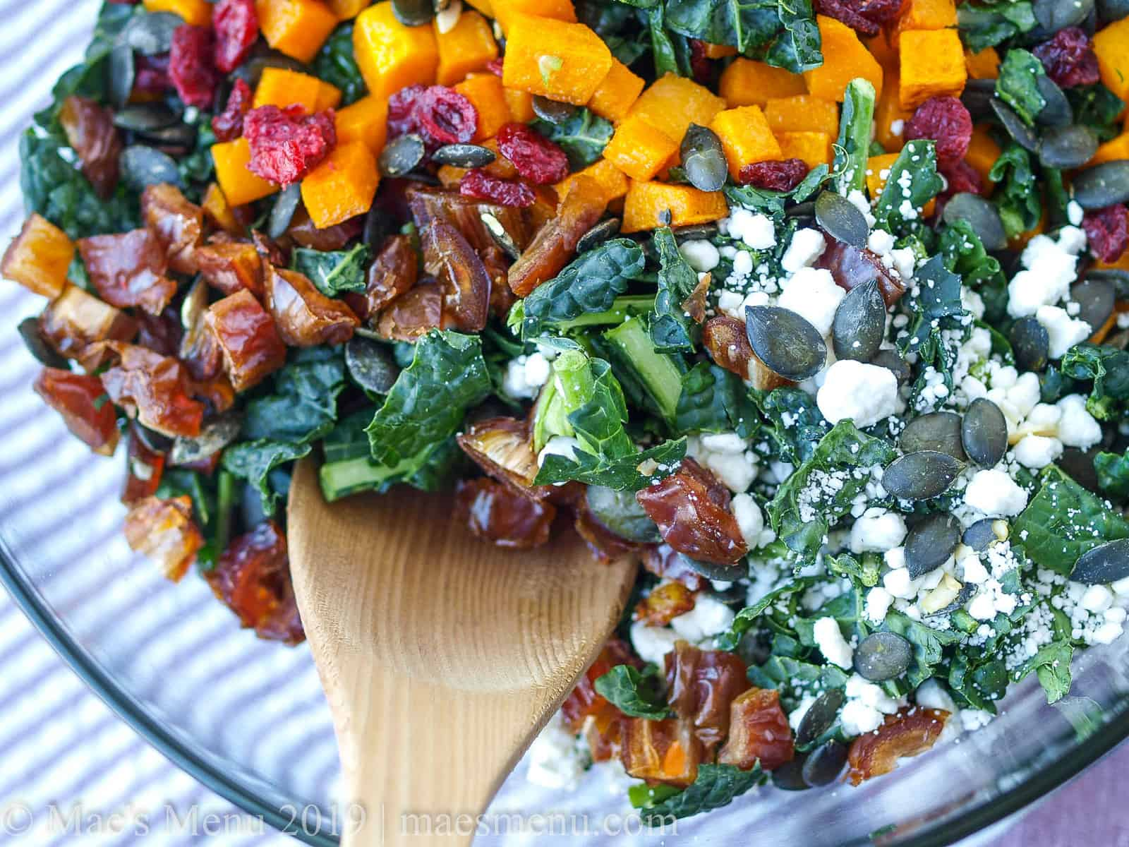 An overhead Up-close shot of lacinato kale with roasted butternut squash, the perfect holiday kale salad.
