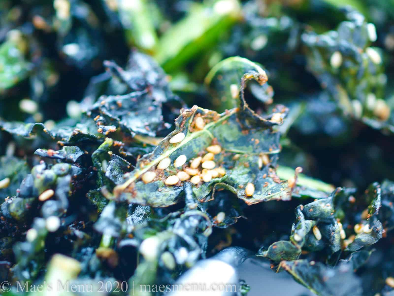 Air fried sesame kale chips straight out of the air fryer.