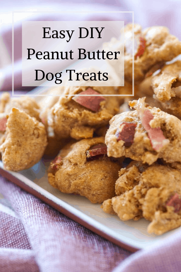 A pinterst pin for peanut butter dog treats. On the image is a side picture of a stack of the cookies.