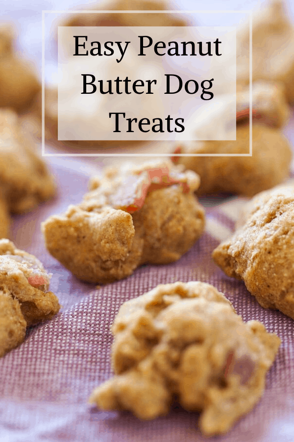 Pinterest pin for easy peanut butter dog treats.  On the image is a side shot of the dog treats on a dish towel