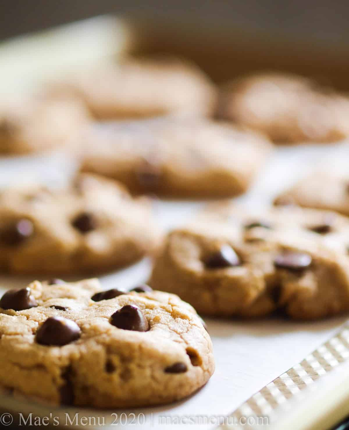 A sheet of high altitude chocolate chip cookies.