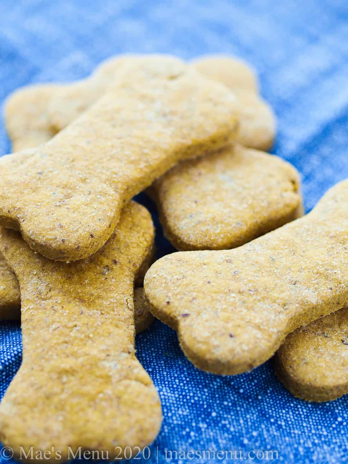 up-close shot of peanut butter pumpkin dog treats.