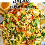 """""""Thai chicken salad"""" with an overhead shot of the salad on a plate"""