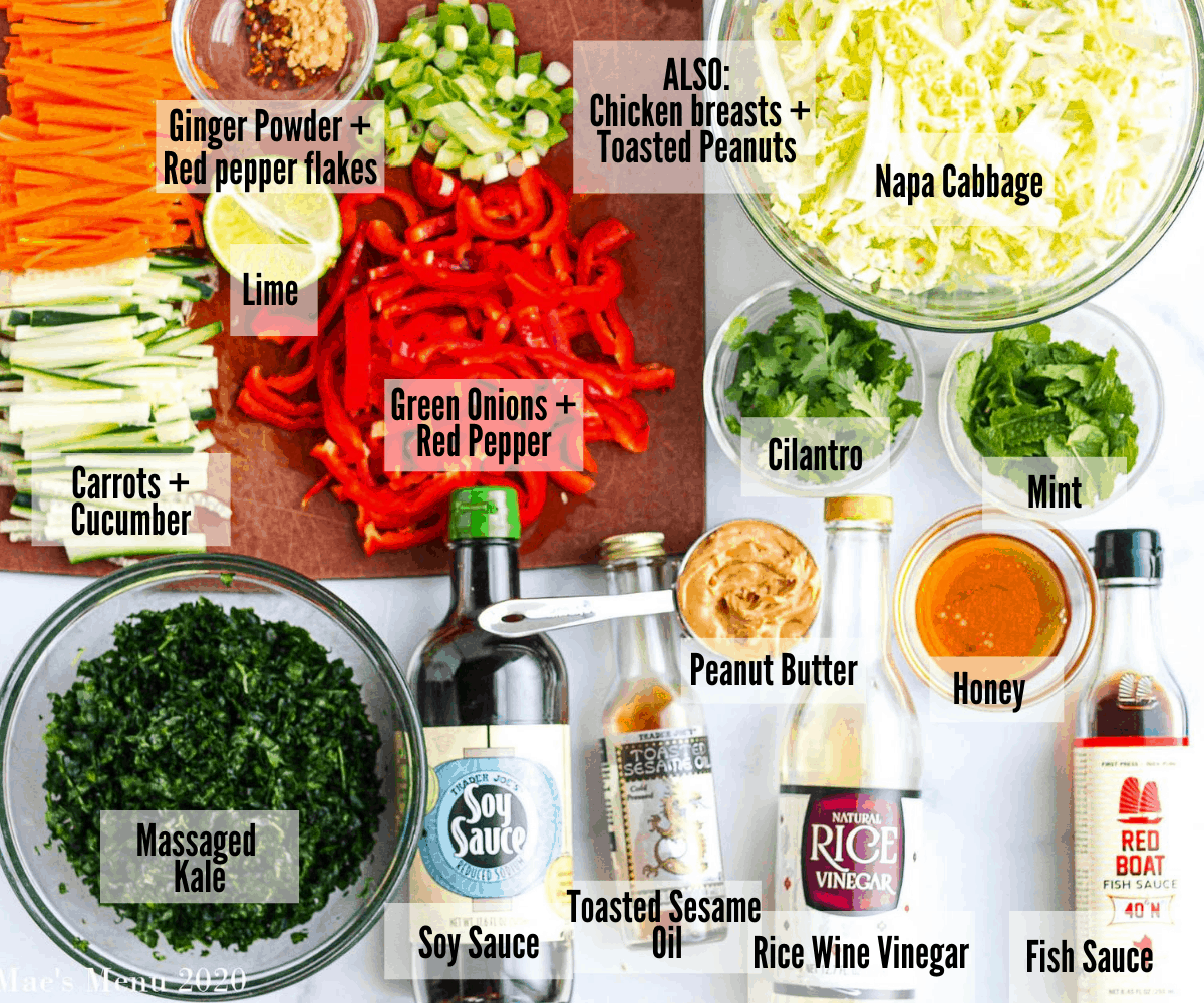 An overhead shot of all the ingredients for this salad: carrots and cucumbers; lime; green onions and red pepper; ginger powder and red pepper flakes; cilantro; mint; napa cabbage; chicken breasts and toasted peanuts; peanut butter; honey; fish sauce; rice wine vinegar; toasted sesame oil' soy sauce; massaged kale
