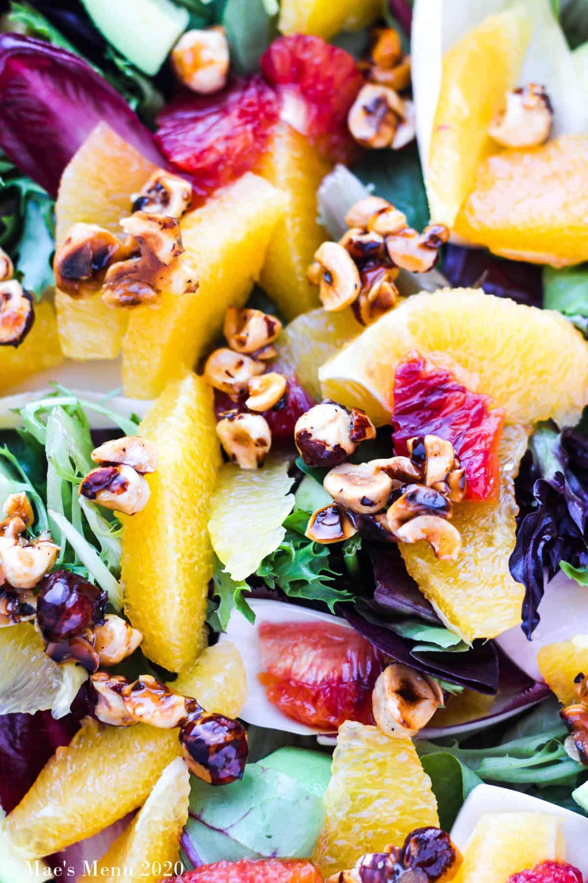 An up close shot of orange salad with honeyed hazelnuts