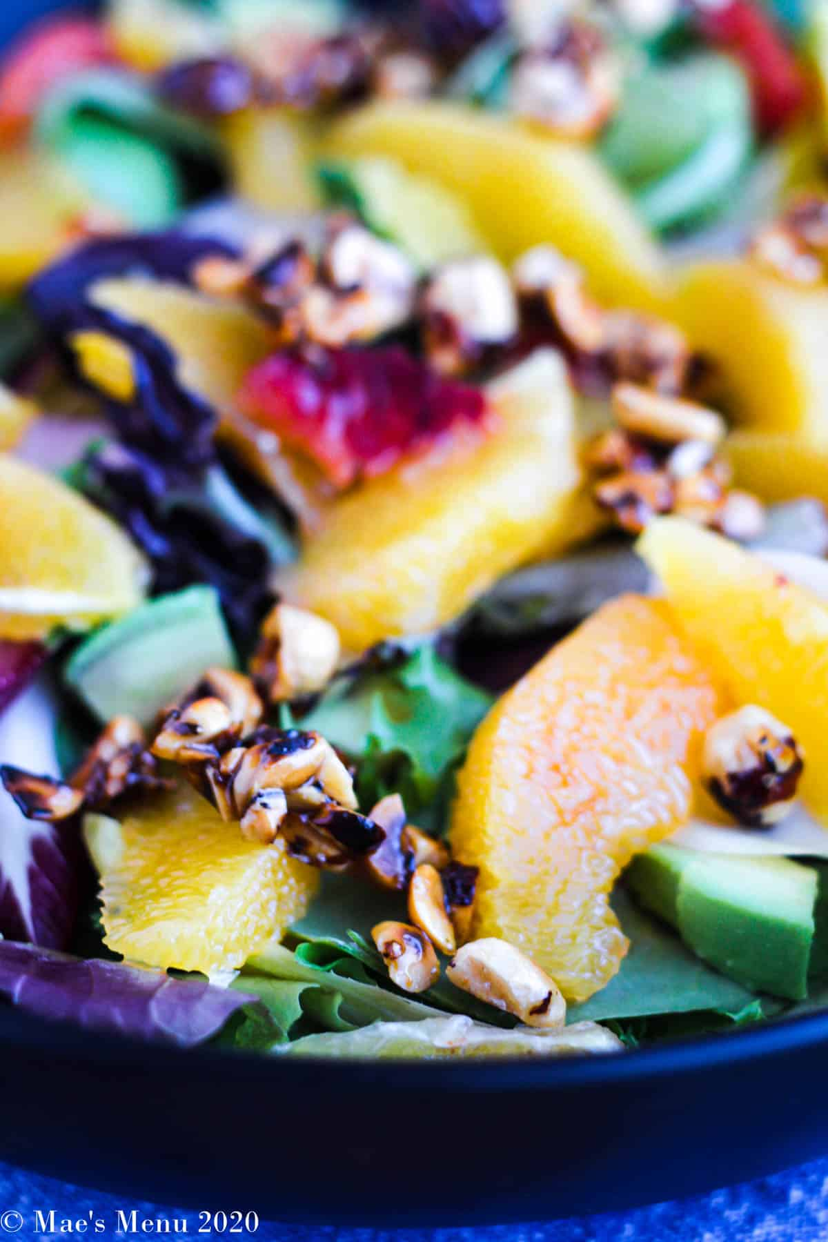 An up-close side shot of a bowl of orange salad with honeyed hazelnuts