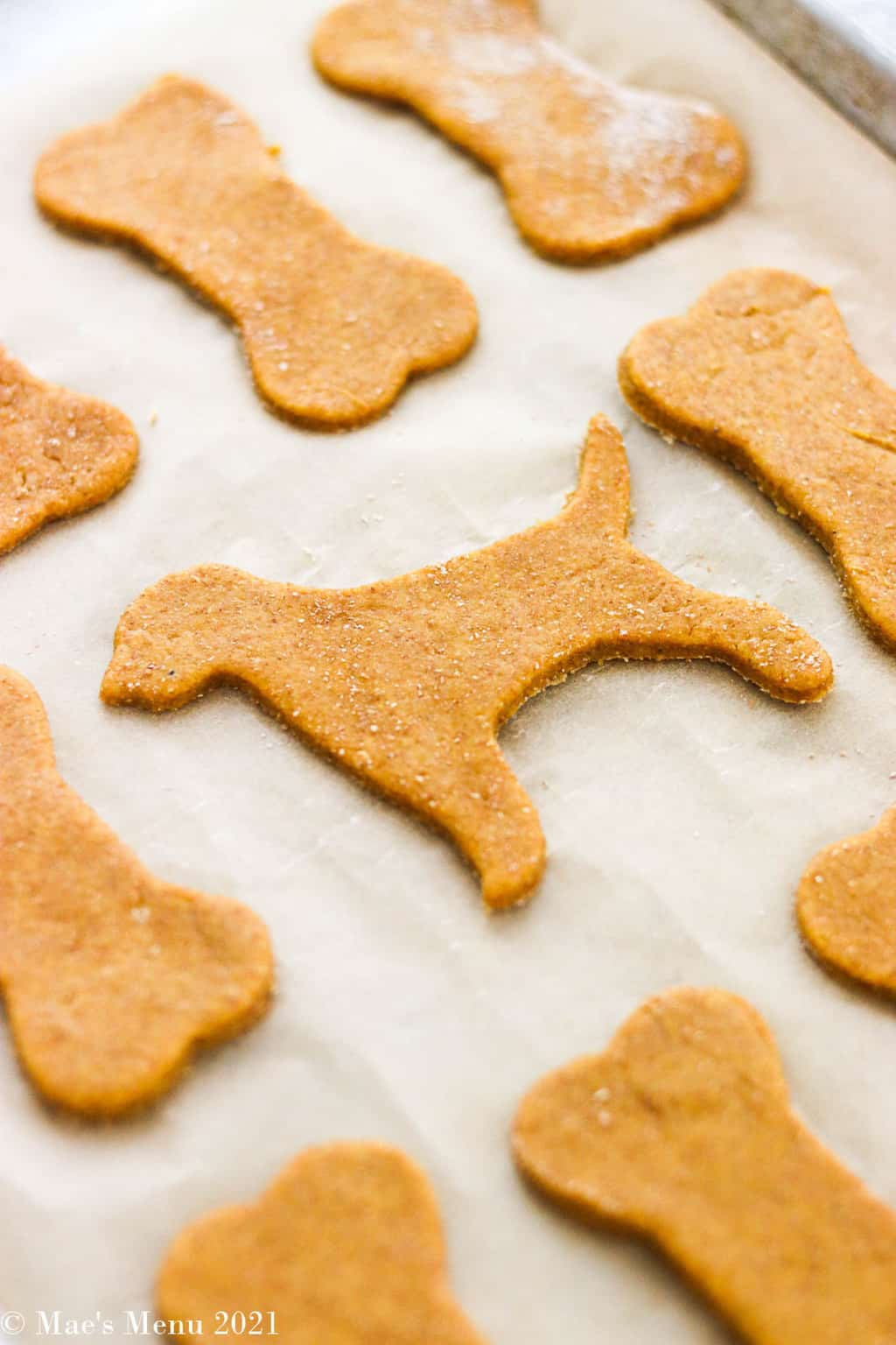 unbaked Peanut butter pumpkin dog treats on a baking sheet