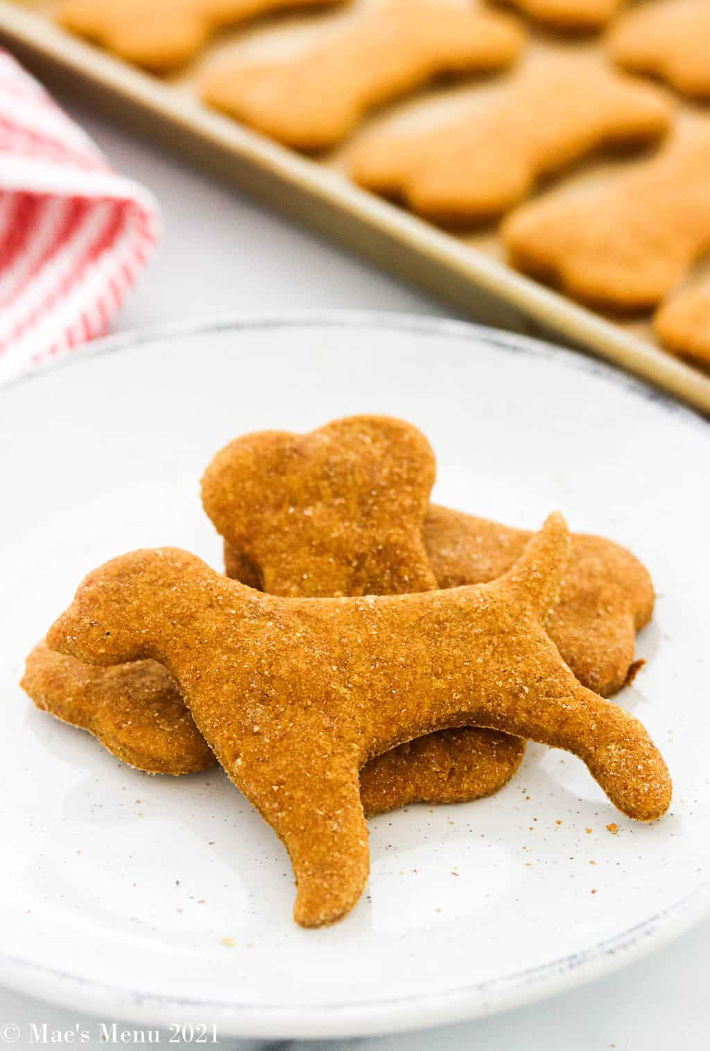 An up-close picture of peanut butter dog treats on a white plate with a tray of treats in the background