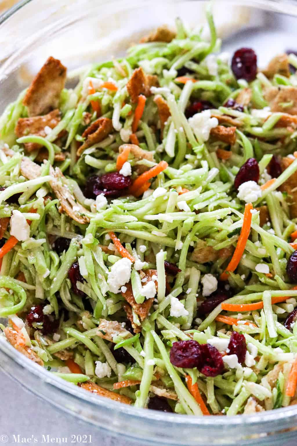 An up-close shot of a bowl of the broccoli slaw recipe