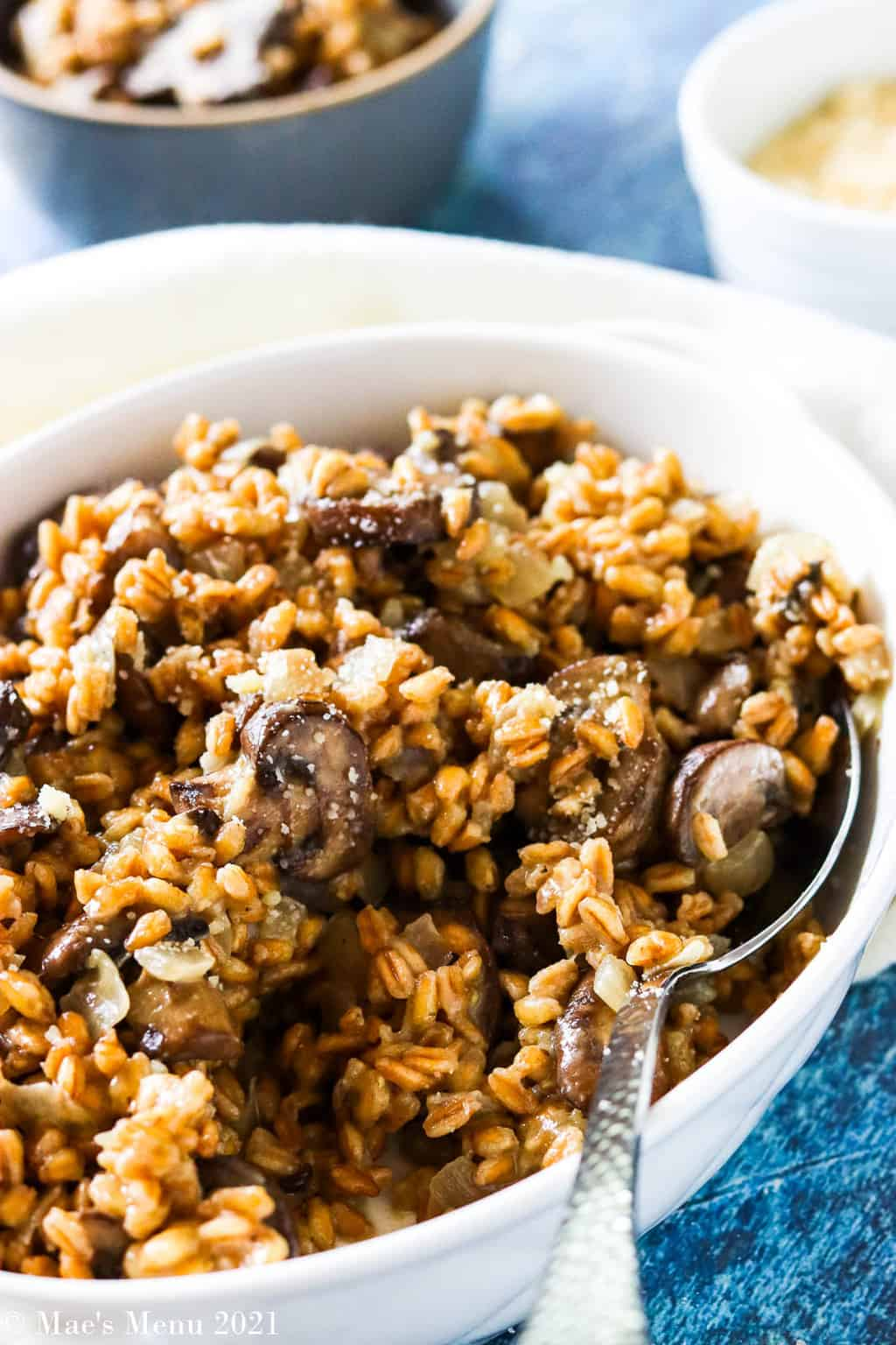 A side shot of a bowl of mushroom farro risotto with a large serving spoon in it