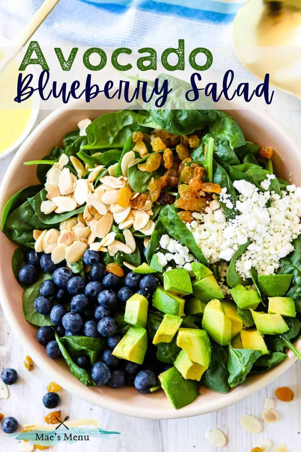 A pinterest pin for avocado blueberry salad with an up-close overhead shot of the salad in a bowl