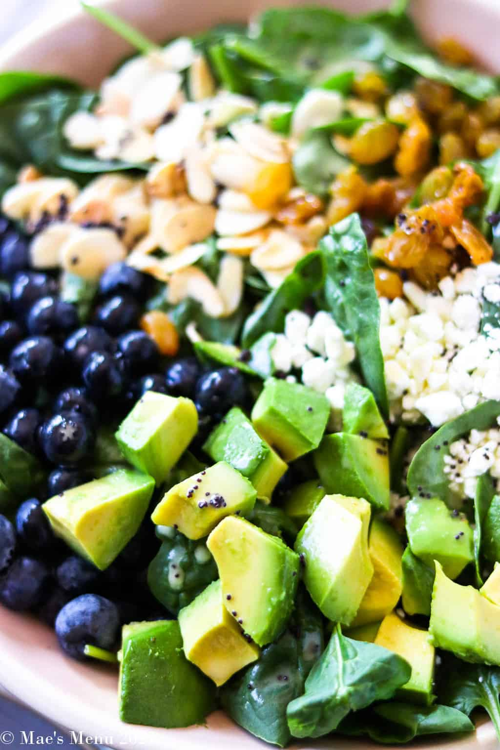 An up-close side shot of a bowl of dressed avocado blueberry salad