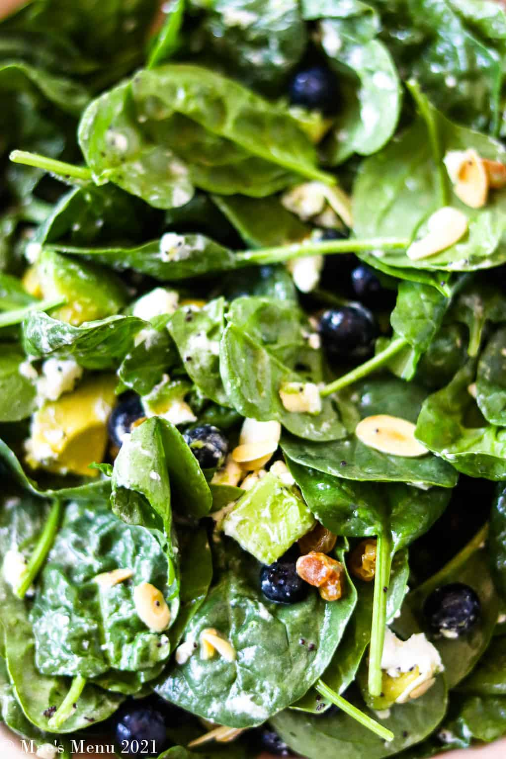 An up-close overhead shot of tossed spinach avocado salad