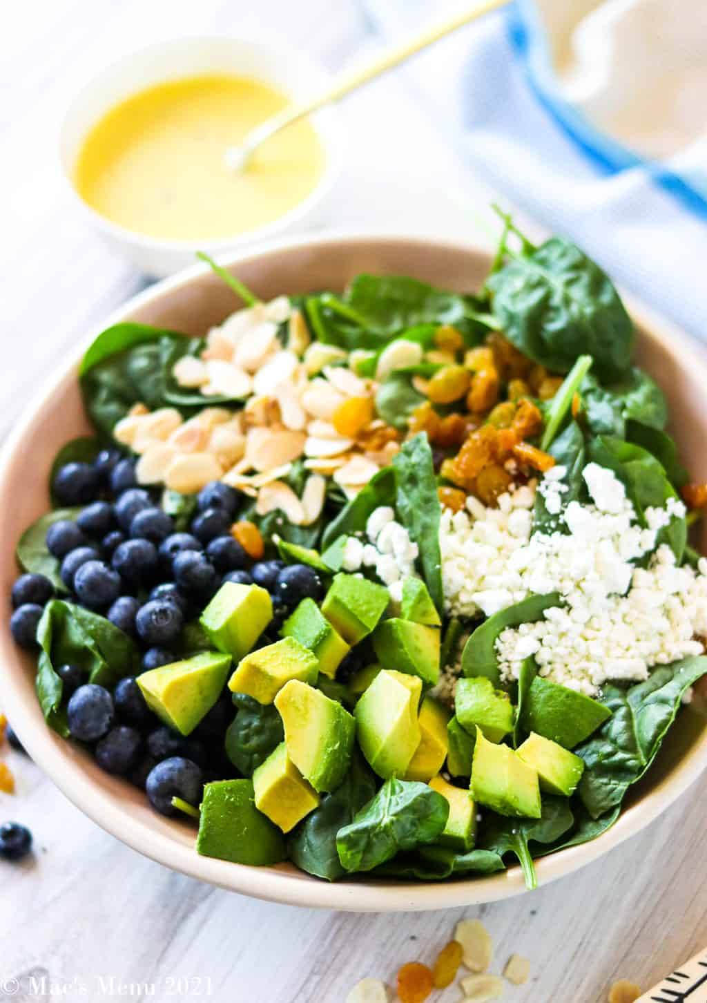A large bowl of undressed blueberry avocado salad