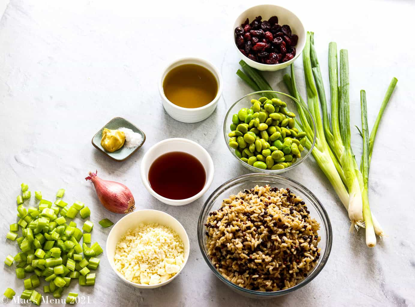 All of the ingredients for the cranberry & edamame brown rice salad: cranberries, green onions, edamame, brown rice, olive oil, red wine vinegar, feta cheese, shallot, dijon and salt, diced celery